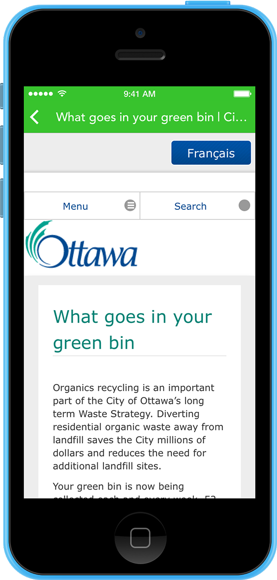 Screenshot of Official Rules from the City of Ottawa